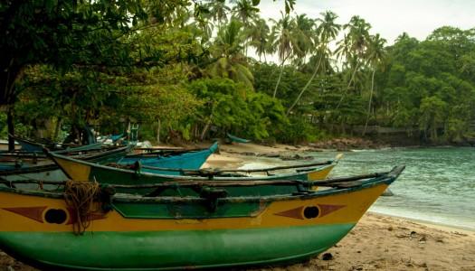Sri Lanka – rajska wyspa