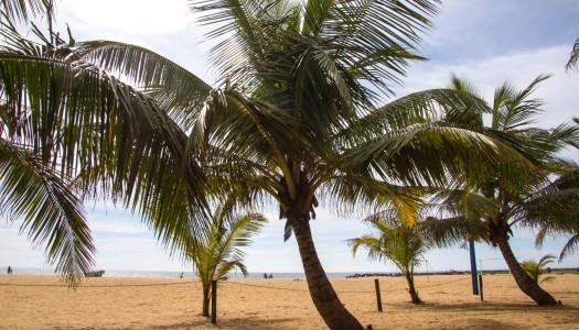 Negombo – na start lankijskiej przygody