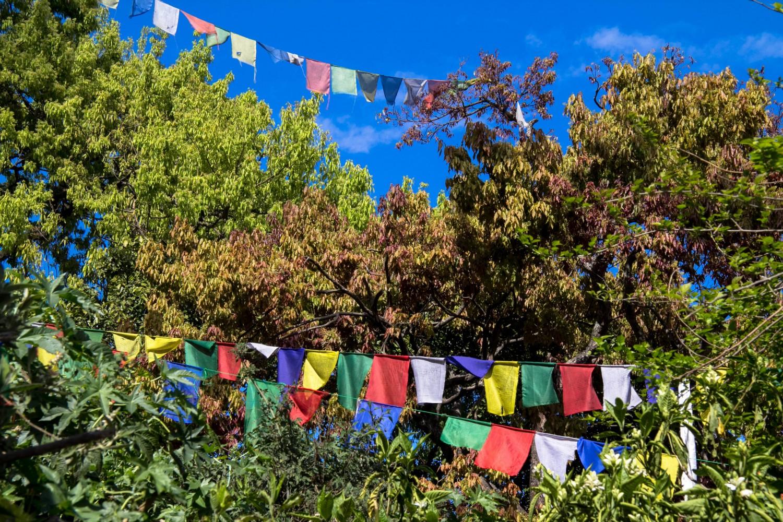 Nepal Swayambunath (59 of 64)