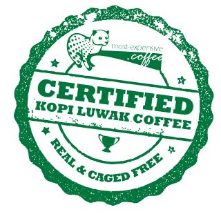 big_certificate_kopiluwak