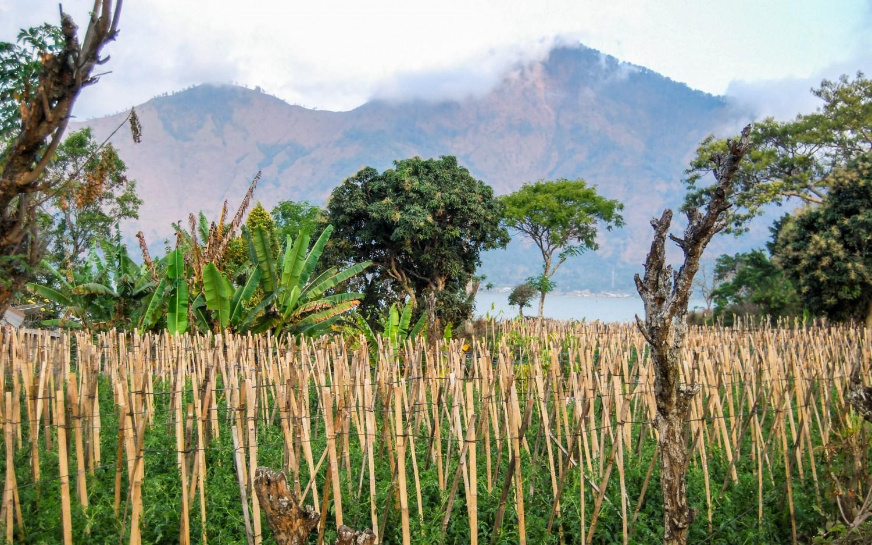 Gunung Agung Bali (1)