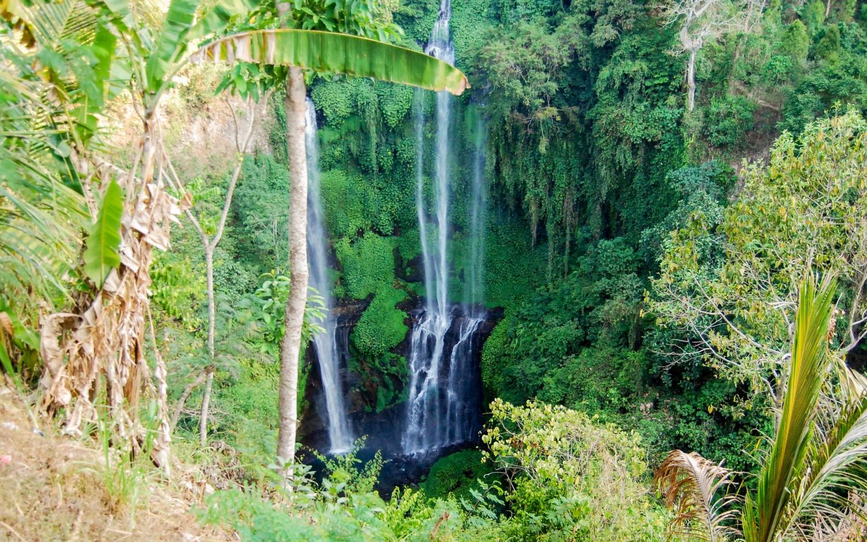 Sekumpul Waterfalls (1)