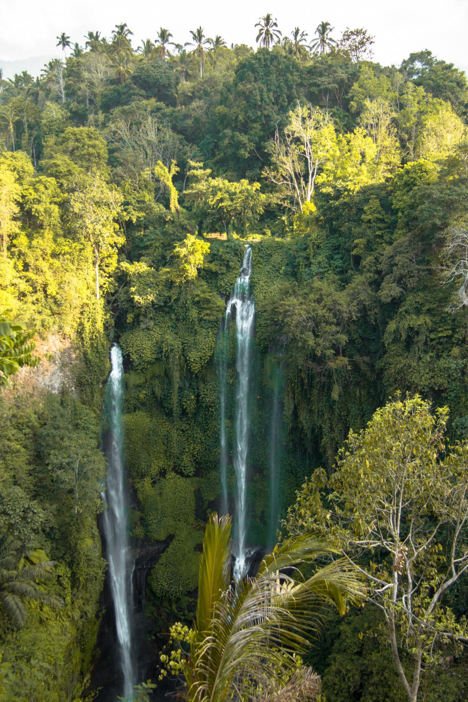 Sekumpul Waterfalls (7)