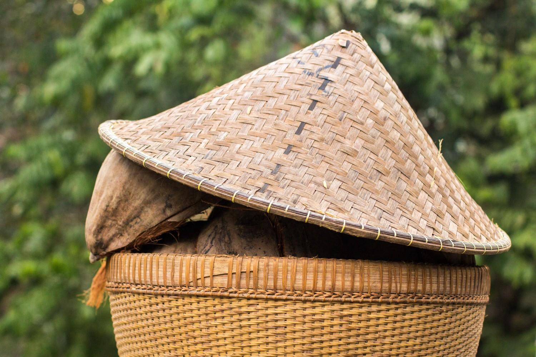 Tarasy ryżowe Tegalalang (12)