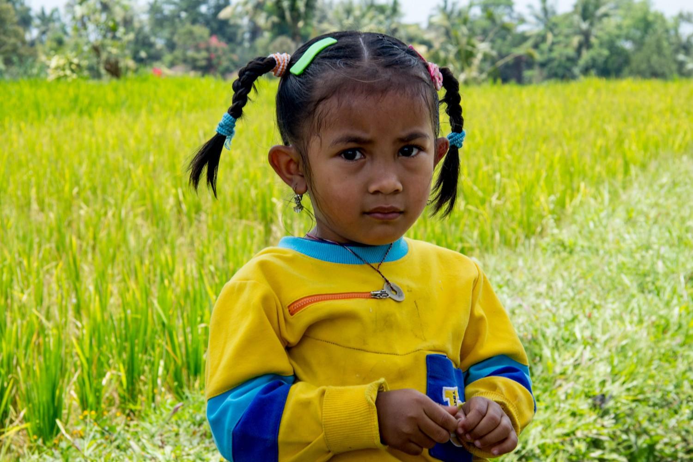Tarasy ryżowe Tegalalang (14)