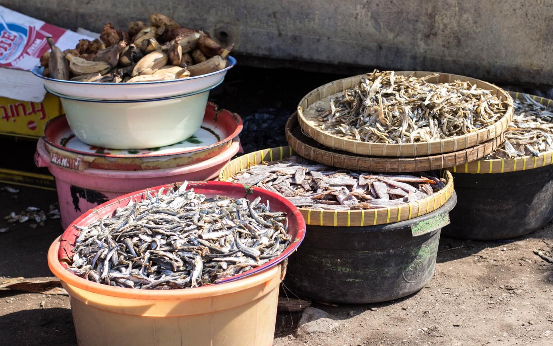 Lombok fish market (2)