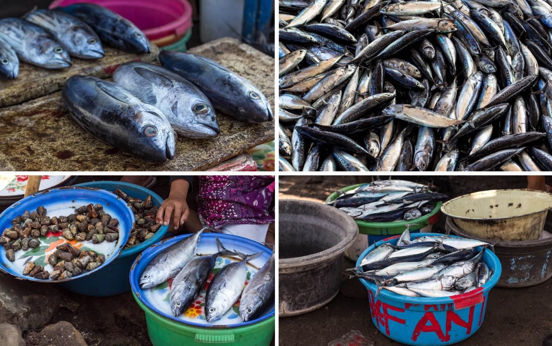 Lombok fish market (3)