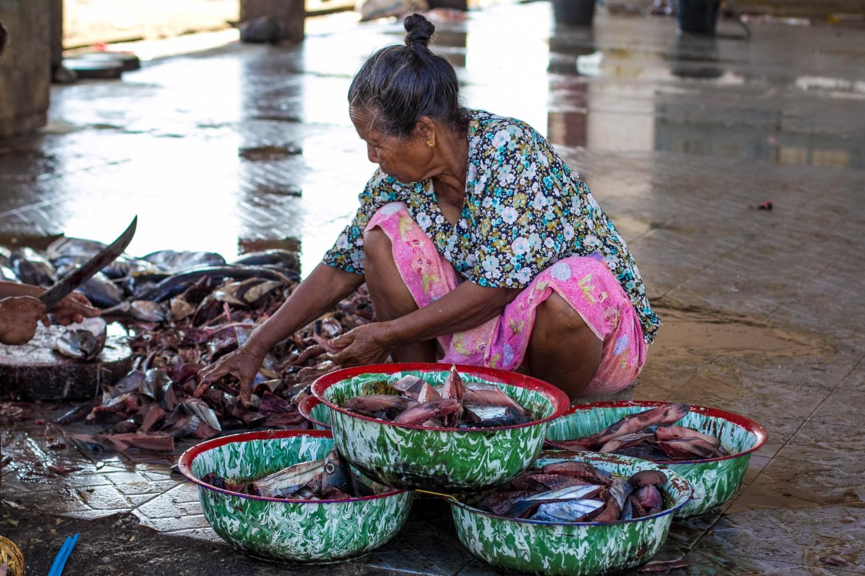 Lombok fish market (8)
