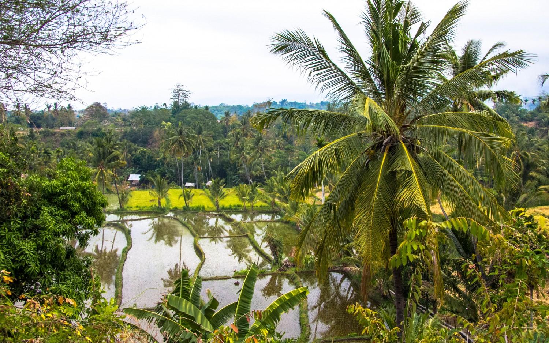 Lomok island Indonesia (32)