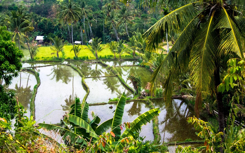 Lomok island Indonesia (33)