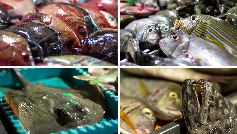 trawangan seafood 2