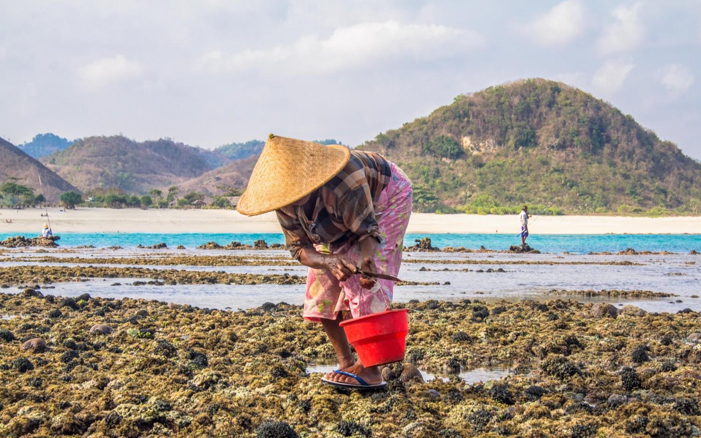 Lombok Indonesia-16
