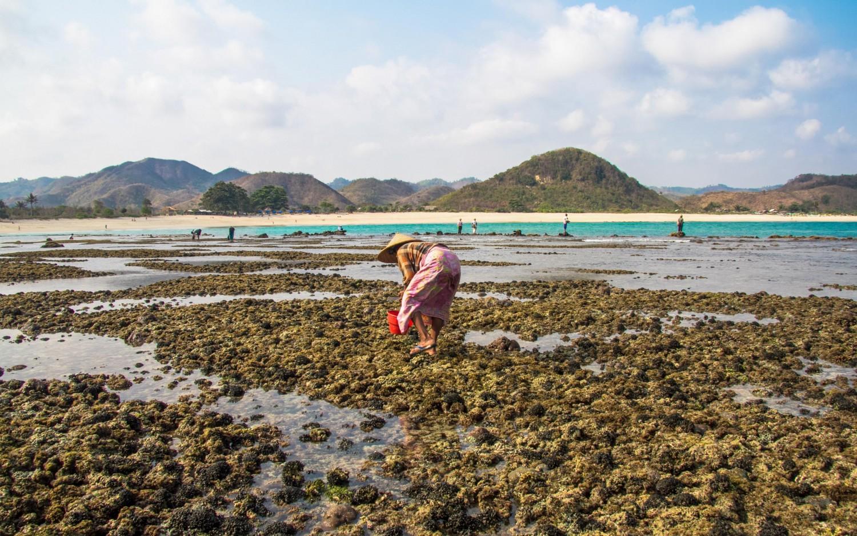 Lombok Indonesia-17