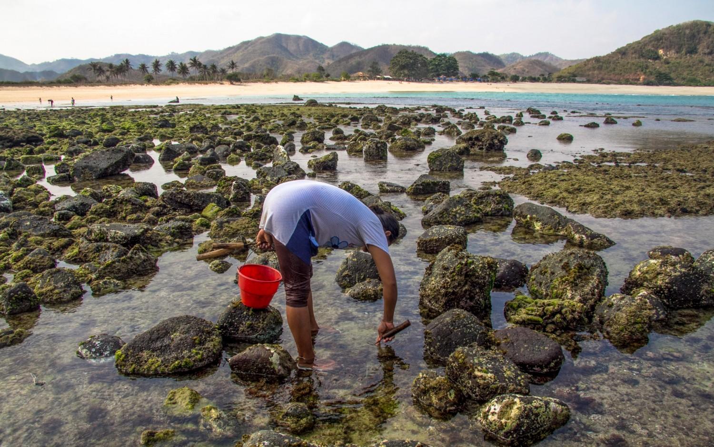 Lombok Indonesia-6