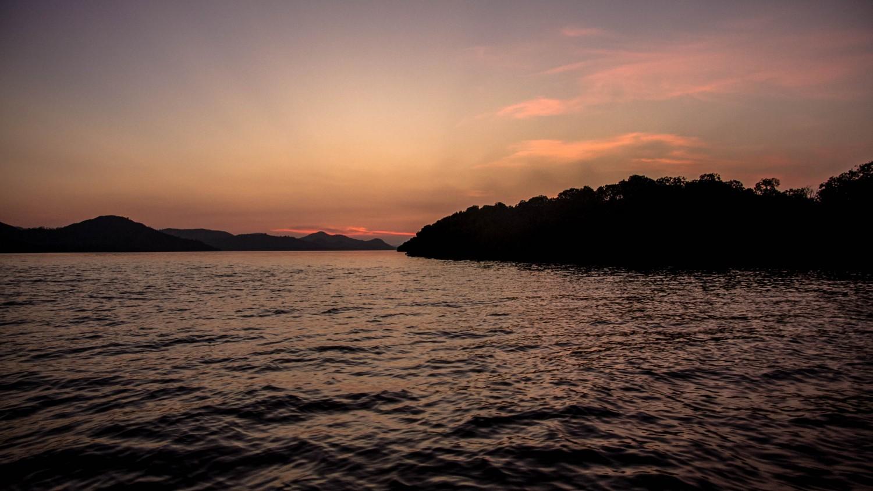 nietoperze Indonezja Kalong Island (4)