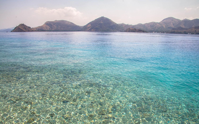 Snorkeling Indonesia (3)