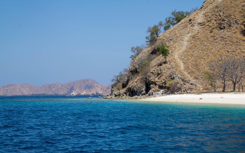 Snorkeling Indonesia (4)