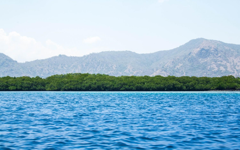 Snorkeling Indonesia (6)