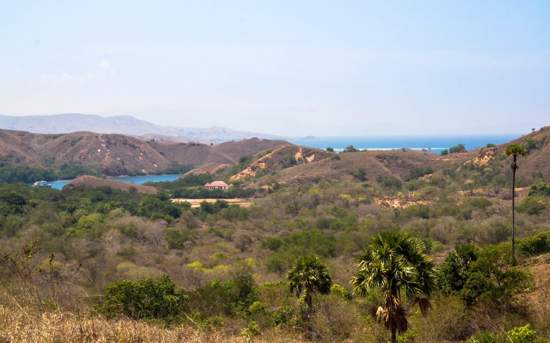 Trekking Komodo Rinca (14)