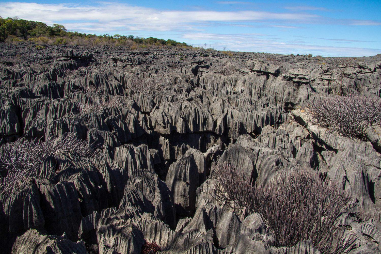 Ankarana Parc Madagascar (3)