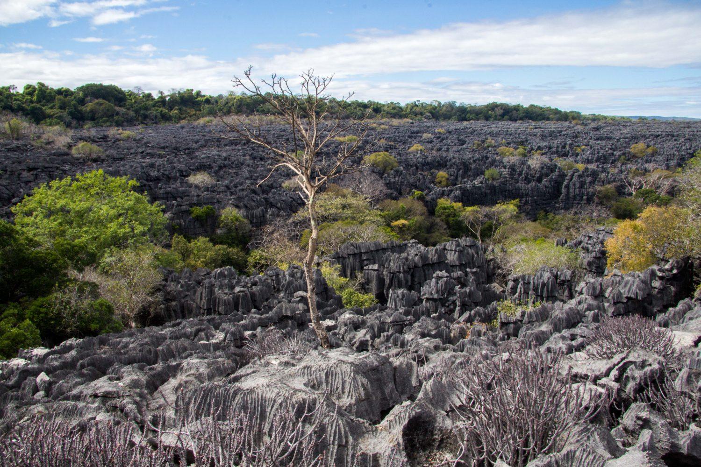 Ankarana Park Madagaskar (23)