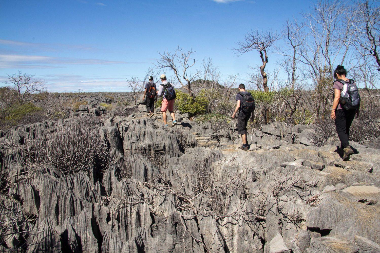 Ankarana Tsingi Madagaskar (3)
