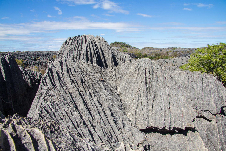 Ankarana Tsingi Madagaskar (4)