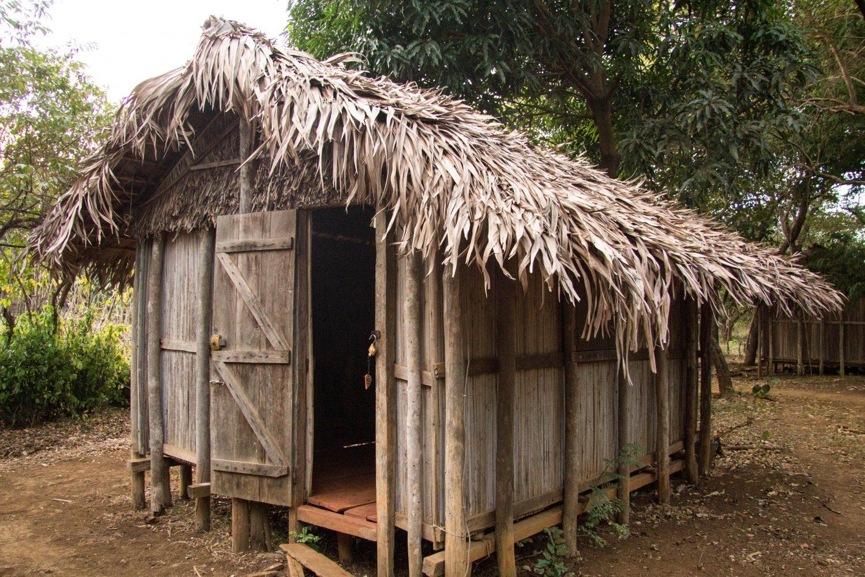 Madagascar blog (2)