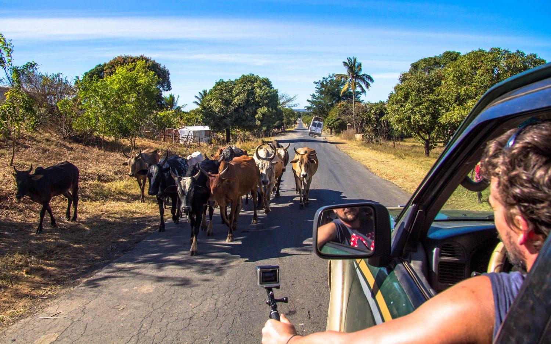 Madagascar roads (1)