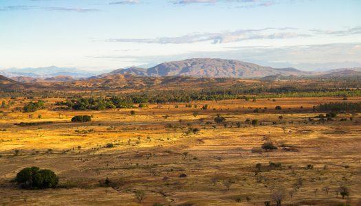 Madagaskar fascynuje!