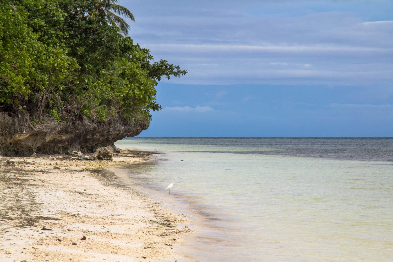 plaże Bohol
